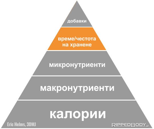 Време на храненията, честота на храненията, определяне на цикъла на калориите и макронутриентите